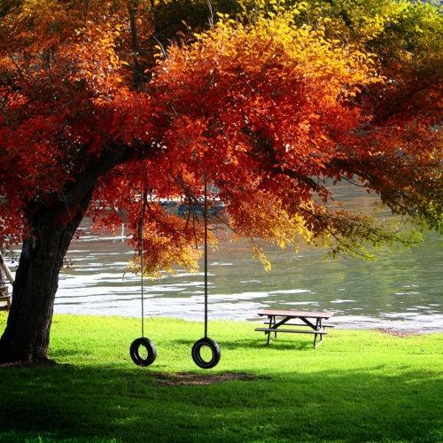 autumn-bench-bronze-brown-calm-Favim.com-456173